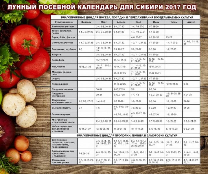 Календарь посадок на 2018 год для Сибири | лунный посевной